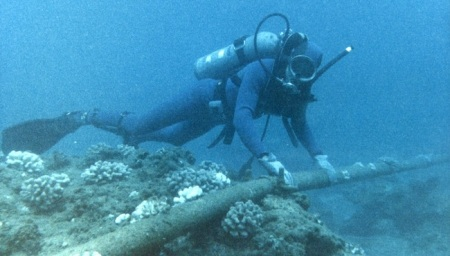 A diver investigating the remains of the rainbow lighting rig yesterday.